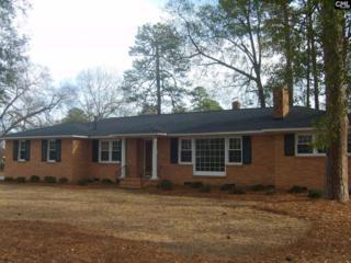 801 Indigo Avenue, Cayce, SC 29033 (MLS #424982) :: Home Advantage Realty, LLC