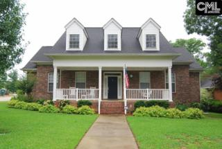 201 Night Harbor Drive, Chapin, SC 29036 (MLS #425010) :: Exit Real Estate Consultants