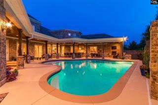 100 Eastshore Drive, Lexington, SC 29072 (MLS #425014) :: Home Advantage Realty, LLC
