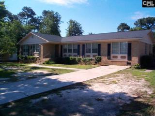 2857 Emanuel Church Road, West Columbia, SC 29170 (MLS #425021) :: Exit Real Estate Consultants
