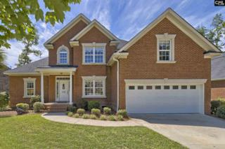 539 Village Church Drive, Chapin, SC 29036 (MLS #425069) :: Exit Real Estate Consultants