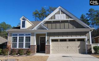 361 Summersweet Court, Blythewood, SC 29016 (MLS #425086) :: Exit Real Estate Consultants