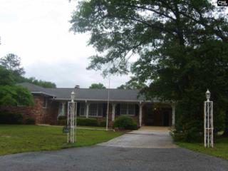 1700 Saluda River Drive, West Columbia, SC 29169 (MLS #425090) :: Exit Real Estate Consultants