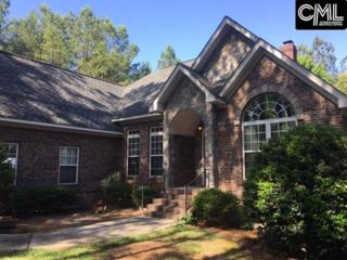 417 Sease Lane, Ridgeway, SC 29045 (MLS #425091) :: Home Advantage Realty, LLC