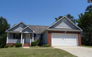 101 Glen Ridge Court #155, Irmo, SC 29063 (MLS #425095) :: Exit Real Estate Consultants