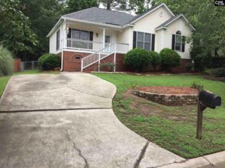 311 Sweet Thorne Road, Irmo, SC 29063 (MLS #425099) :: Exit Real Estate Consultants