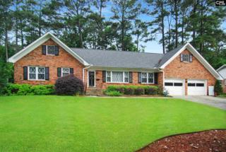 231 Shareditch Road, Columbia, SC 29210 (MLS #425143) :: Exit Real Estate Consultants