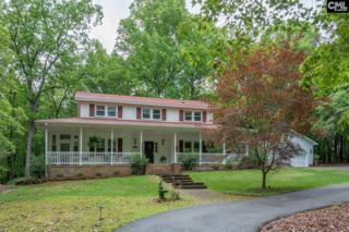116 Pebble Creek Road, Chapin, SC 29036 (MLS #425151) :: Exit Real Estate Consultants