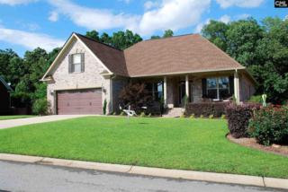 617 Village Market Drive, Chapin, SC 29036 (MLS #425232) :: Home Advantage Realty, LLC