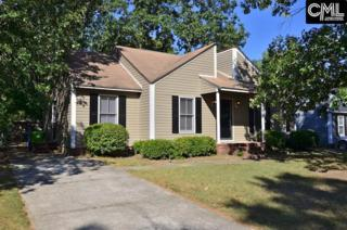 161 Twisted Hill Road, Irmo, SC 29063 (MLS #425266) :: Home Advantage Realty, LLC
