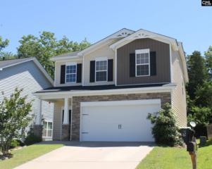 460 Whispering Oak Circle, Chapin, SC 29036 (MLS #425276) :: Home Advantage Realty, LLC