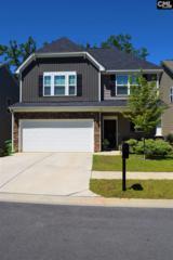 524 Slices Way, Chapin, SC 29036 (MLS #425288) :: Home Advantage Realty, LLC