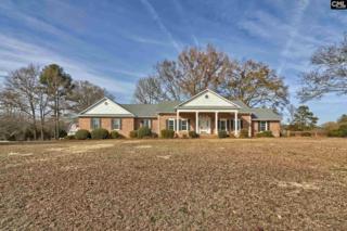 142 Tombfield Road, Camden, SC 29020 (MLS #425291) :: Home Advantage Realty, LLC