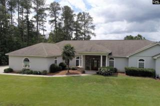 155 N Shore Drive, Prosperity, SC 29127 (MLS #425302) :: Home Advantage Realty, LLC