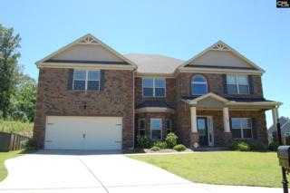 12 Pickard Court, Chapin, SC 29036 (MLS #425320) :: Home Advantage Realty, LLC