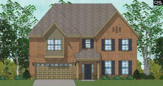 256 Charter Oaks Drive #16, Blythewood, SC 29016 (MLS #425323) :: Home Advantage Realty, LLC