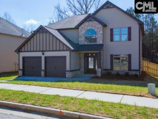 108 Village Green Way, Lexington, SC 29072 (MLS #425327) :: Home Advantage Realty, LLC