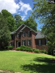 201 Cade's Court, Columbia, SC 29212 (MLS #425340) :: Home Advantage Realty, LLC