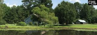 1109 Congress Road, Eastover, SC 29044 (MLS #425351) :: Home Advantage Realty, LLC