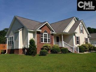 1200 Parliament Lakes Drive, Columbia, SC 29223 (MLS #425357) :: Home Advantage Realty, LLC