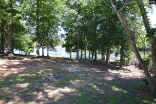2476 Lake Road, Ridgeway, SC 29130 (MLS #425361) :: Home Advantage Realty, LLC