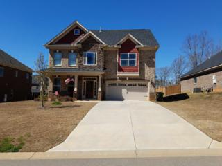 51 Bunchberry Ct, Chapin, SC 29036 (MLS #420160) :: Home Advantage Realty, LLC
