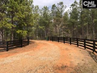 1238 N 25 Highway, Edgefield, SC 29824 (MLS #420189) :: Home Advantage Realty, LLC