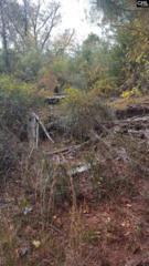 South Of Hwy 355 @ Lexington County Line, Little Mountain, SC 29075 (MLS #420284) :: Home Advantage Realty, LLC