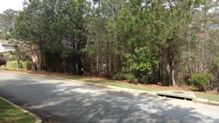 229 Point Overlook Drive, Chapin, SC 29036 (MLS #420338) :: Home Advantage Realty, LLC