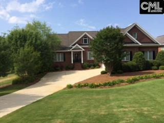 209 Mariannas Court, Lexington, SC 29072 (MLS #420358) :: Exit Real Estate Consultants