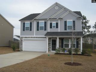 173 Allans Mill Drive, Columbia, SC 29223 (MLS #420462) :: Home Advantage Realty, LLC