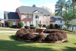 14 Tennis Court, Chapin, SC 29036 (MLS #420865) :: Exit Real Estate Consultants