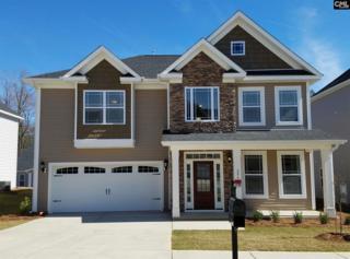 228 Rosecrest Road, Lexington, SC 29072 (MLS #420957) :: Exit Real Estate Consultants