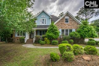 422 Oxford Road, Lexington, SC 29072 (MLS #423516) :: Exit Real Estate Consultants