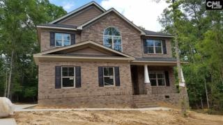 504 Links Pointe Court, Chapin, SC 29036 (MLS #424896) :: Home Advantage Realty, LLC