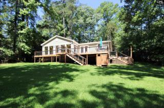 1265 Newberry Shores Drive, Prosperity, SC 29127 (MLS #424921) :: Exit Real Estate Consultants