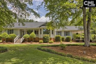 415 Bear Creek Road, Chapin, SC 29036 (MLS #424980) :: Exit Real Estate Consultants
