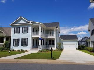 954 Battenkill Court, Lexington, SC 29072 (MLS #425223) :: Home Advantage Realty, LLC
