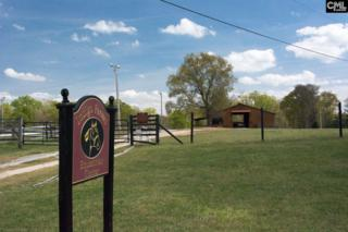 985 Amicks Ferry Road, Chapin, SC 29036 (MLS #419641) :: Home Advantage Realty, LLC