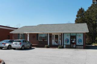105 Virginia Street, Chapin, SC 29036 (MLS #419823) :: Home Advantage Realty, LLC