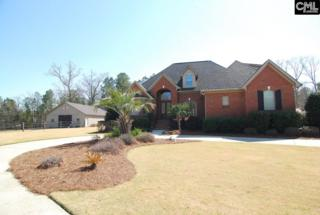 220 Shady Acres Drive, Chapin, SC 29036 (MLS #419851) :: Home Advantage Realty, LLC