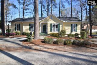 1108 Indian Summer Point, Chapin, SC 29036 (MLS #419948) :: Home Advantage Realty, LLC