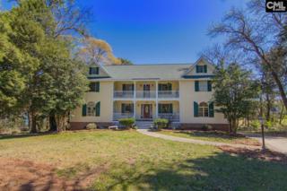 137 Lake Vista Drive, Chapin, SC 29036 (MLS #420042) :: Home Advantage Realty, LLC
