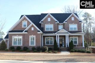 13 Moon Raker Court, Chapin, SC 29036 (MLS #420099) :: Home Advantage Realty, LLC