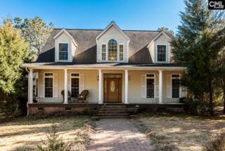295 Fox Haven Lane, Camden, SC 29020 (MLS #420206) :: Home Advantage Realty, LLC