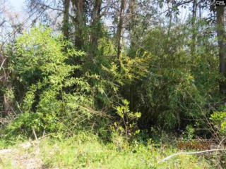 2725 Riverland Drive, Cayce, SC 29033 (MLS #420252) :: Home Advantage Realty, LLC