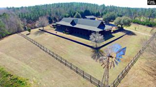 100 Ranch Road, Other, SC 29135 (MLS #420347) :: Home Advantage Realty, LLC