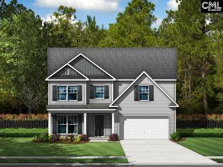 1037 Heart Pine Drive #180, Blythewood, SC 29016 (MLS #420379) :: Exit Real Estate Consultants