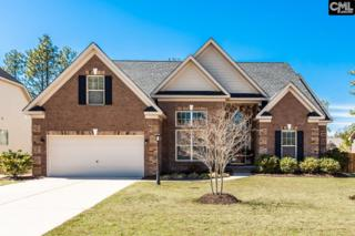 148 Fox Hill Drive, Blythewood, SC 29016 (MLS #420422) :: Home Advantage Realty, LLC