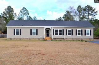 346 Cook Road, Lugoff, SC 29078 (MLS #420431) :: Home Advantage Realty, LLC